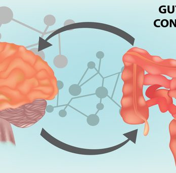 brain-gut-microbiome axis